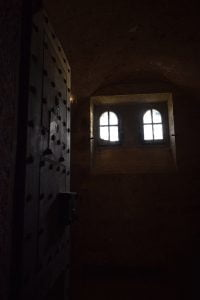 Dawn in the cells