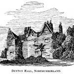 The Denton Hall Silky