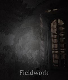 Jedburgh Castle Jail: Fieldwork